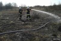 Pożar traw w Pilicy - 21.03 (10)